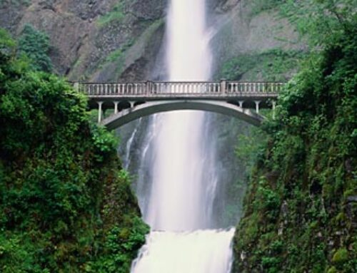 Multnomah Falls & Gorge Waterfalls & Wine Tasting Combo