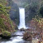 Experience Oregon Waterfalls & Hiking Tours