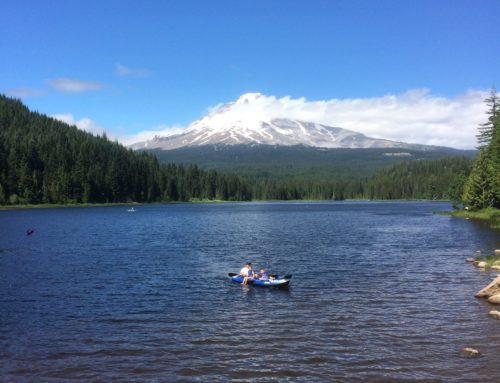 Mt Hood & Multnomah Falls Loop Tour
