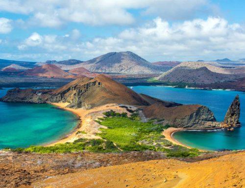 Ecuador & Galapagos Islands Adventure Tour Contact Us!