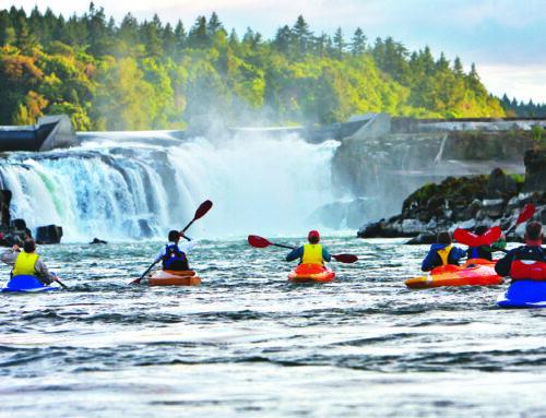 Kayaking and Paddleboarding Trips