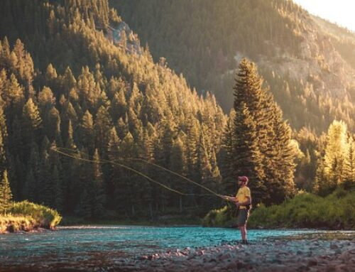 Fishing and Crabbing Excursions