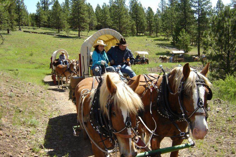 wagon train 2