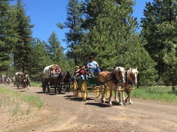wagon train 4