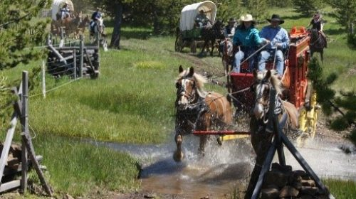 Old West Wagon Train Experience!